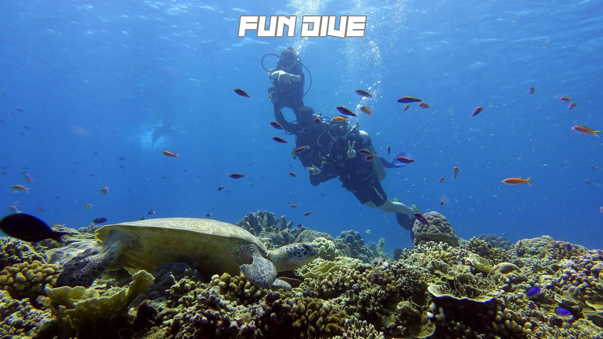 Gili Fun DiveDSC03414