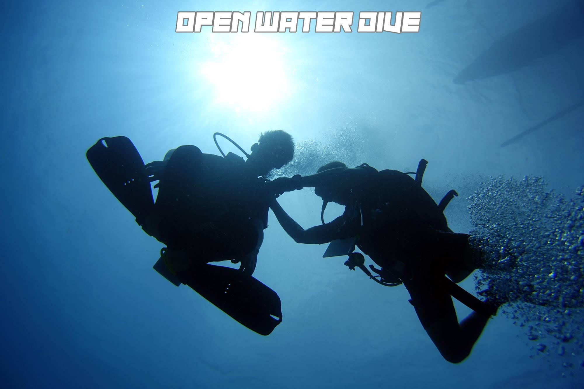 OPENWATERDSC06831
